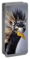 Portable Battery Charger featuring the photograph Anhinga  by Savannah Gibbs