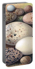 Assorted Birds Eggs, Historical Art Portable Battery Charger
