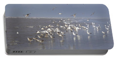Birds At The Beach Portable Battery Charger