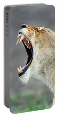 Close-up Of A Lioness Panthera Leo Portable Battery Charger