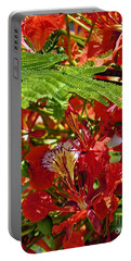 Portable Battery Charger featuring the photograph Flamboyan by Lilliana Mendez