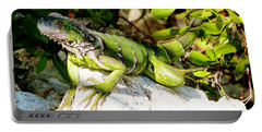 Portable Battery Charger featuring the photograph Green Iguana by Amar Sheow
