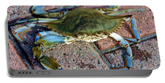 Portable Battery Charger featuring the photograph Hudson River Crab by Lilliana Mendez