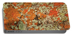 Portable Battery Charger featuring the photograph Lichen Abstract by Mae Wertz