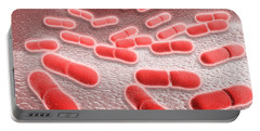 Microscopic View Of Listeria Portable Battery Charger