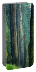 Northwest Forest    Portable Battery Charger