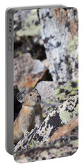 Portable Battery Charger featuring the photograph Pika by Michael Chatt
