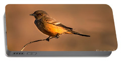 Say's Phoebe Portable Battery Charger by Robert Bales