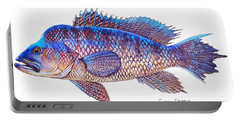 Sea Bass Portable Battery Charger