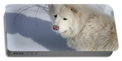 Portable Battery Charger featuring the photograph Snowy Nose by Fiona Kennard
