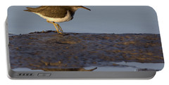 Spotted Sandpiper Reflection Portable Battery Charger