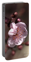 Portable Battery Charger featuring the photograph Spring Blossom by Joy Watson