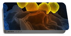 Streptococcus Pyogenes Bacteria Sem Portable Battery Charger