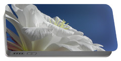 Portable Battery Charger featuring the photograph Striking Contrast by Deb Halloran