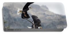 Take Flight Portable Battery Charger
