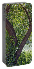Portable Battery Charger featuring the photograph Tree At Stow Lake by Kate Brown