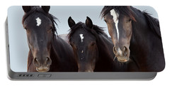 3 Amigos Wild Mustang Portable Battery Charger