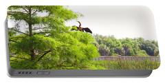 Anhinga Anhinga Anhinga On A Tree Portable Battery Charger
