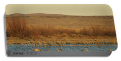 Birds In Bosque Portable Battery Charger