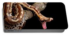 Blood Python Python Brongersmai Portable Battery Charger