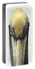 Brown Pelican-2 Portable Battery Charger