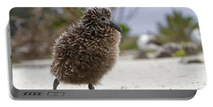Laysan Albatross Chick Portable Battery Charger