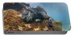 Marine Iguana Feeding On Algae Punta Portable Battery Charger