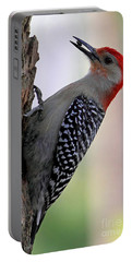 Portable Battery Charger featuring the photograph Red Bellied Woodpecker  by Meg Rousher