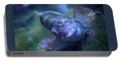 Portable Battery Charger featuring the photograph Redspotted Hawkfish  by Savannah Gibbs