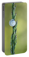 Snail On Grass Portable Battery Charger