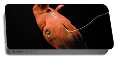 Vampire Squid Portable Battery Charger