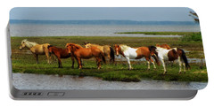 Wild Horses Of Assateague Island Portable Battery Charger