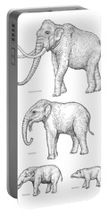 Elephant Evolution, Artwork Portable Battery Charger by Gary Hincks