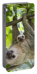 Hoffmanns Two-toed Sloth And Old Baby Portable Battery Charger
