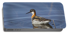 Rednecked Phalarope Portable Battery Charger