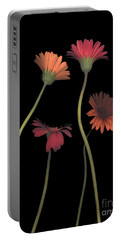 4daisies On Stems Portable Battery Charger