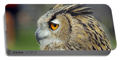 European Eagle Owl Portable Battery Charger