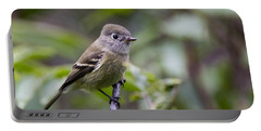 Alder Flycatcher Portable Battery Charger