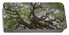 Sc Angel Oak Tree Portable Battery Charger