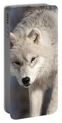 Arctic Wolf Pup Portable Battery Charger