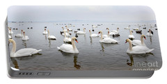 60 Swans A Swimming Portable Battery Charger by Laurel Best