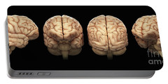 The Human Brain Portable Battery Charger