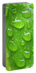Portable Battery Charger featuring the photograph A Cleansing Morning Rain by Robert ONeil