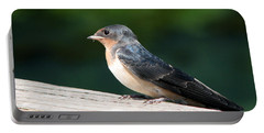 A Female Purple Martin Is Watching You Portable Battery Charger by Eva Kaufman