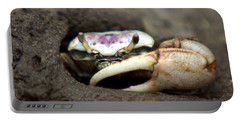 A Fiddler Crab Around Hilton Head Island Portable Battery Charger