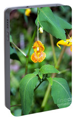 Portable Battery Charger featuring the photograph A Fragile Flower by Chalet Roome-Rigdon