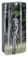 A Great Gray Owl Keeps A Watchful Eye Portable Battery Charger