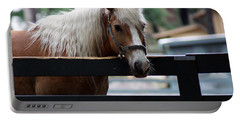 A Hilton Head Island Horse Portable Battery Charger