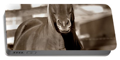 Portable Battery Charger featuring the photograph A Horse Is A Horse by Deena Stoddard