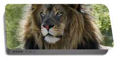 A Lion's Thoughts Portable Battery Charger